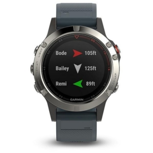 Sportestr s GPS Garmin Fenix 5 Silver Optic